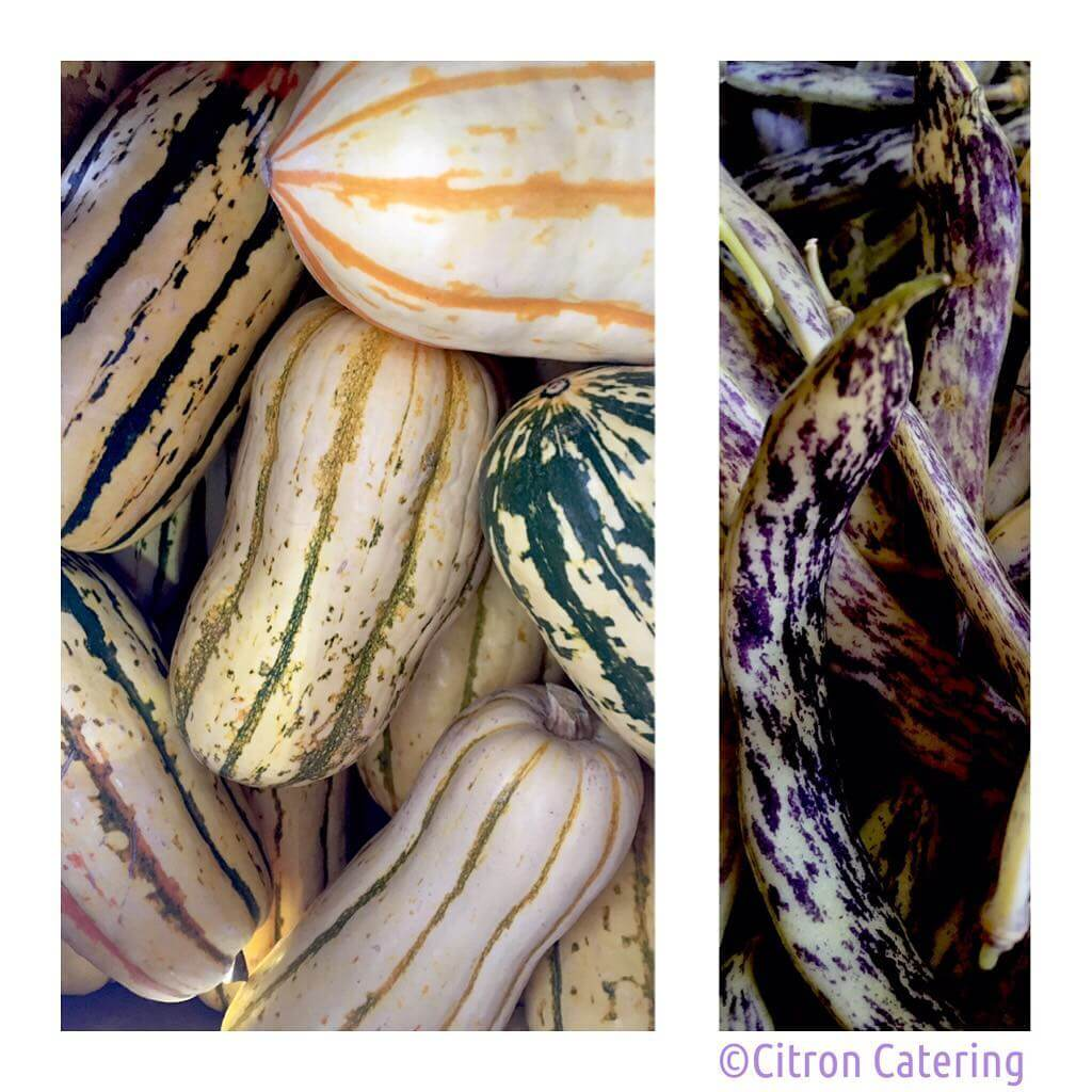 Straight from the farmers market are these organic Delicata Squash and Dragon's Tongue Beans! Can't wait to use…🍆🍠💜